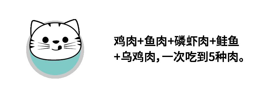 5拼猫-04.png