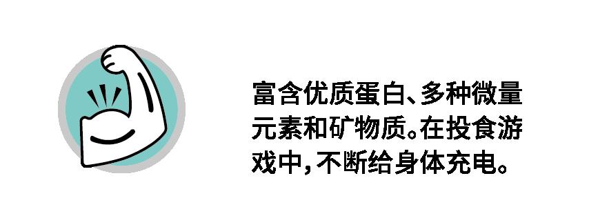5拼猫-05.png